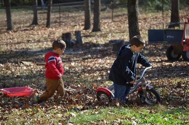 chlapci v podzimním lese