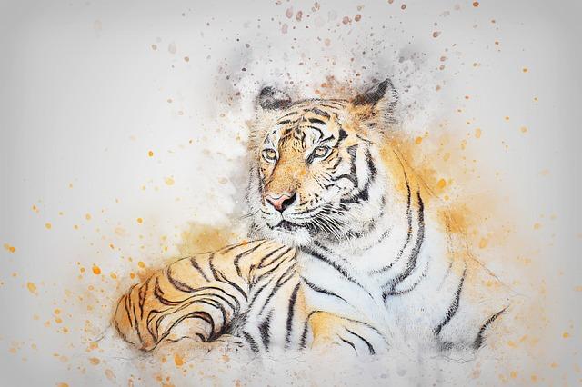 obraz tygra.jpg